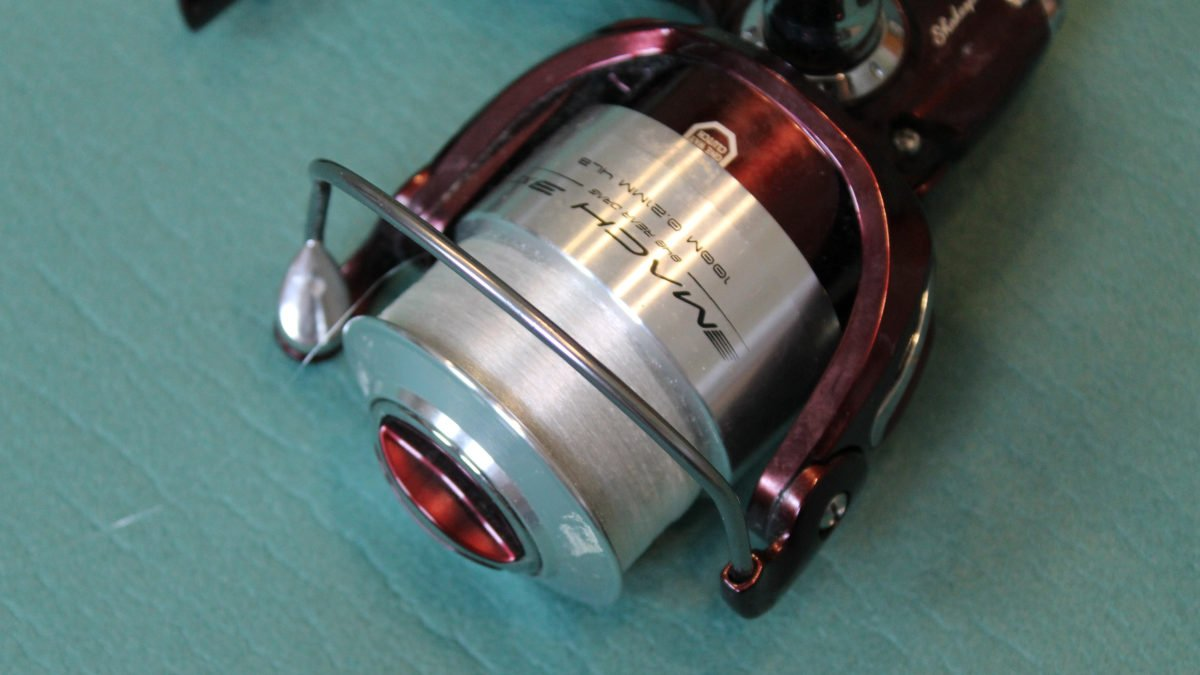Read more about the article Fixed spool reel