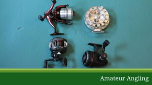 Reels for coarse fishing