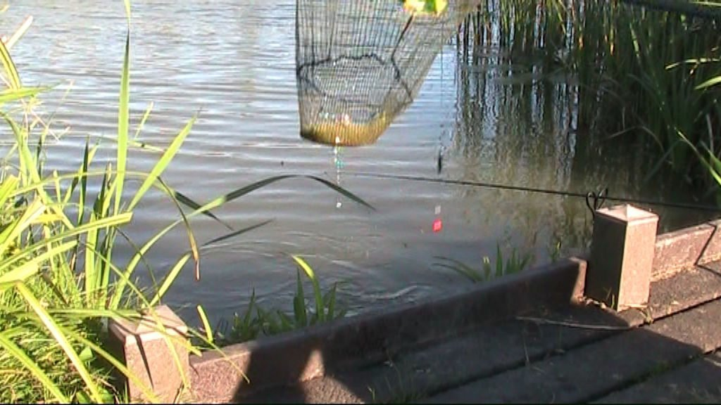 Tench on a driftbeater