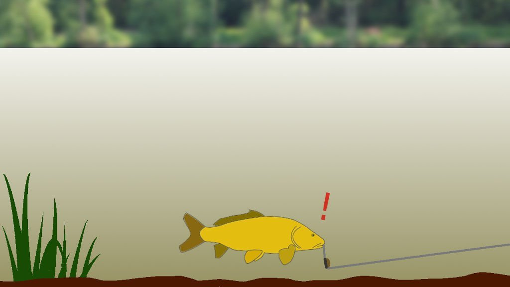 How to Set Up a Fishing Rod for Lure Fishing