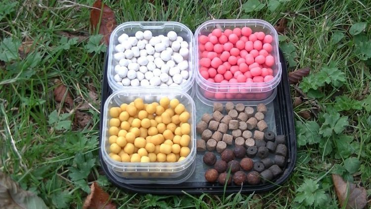 Selection of hook baits