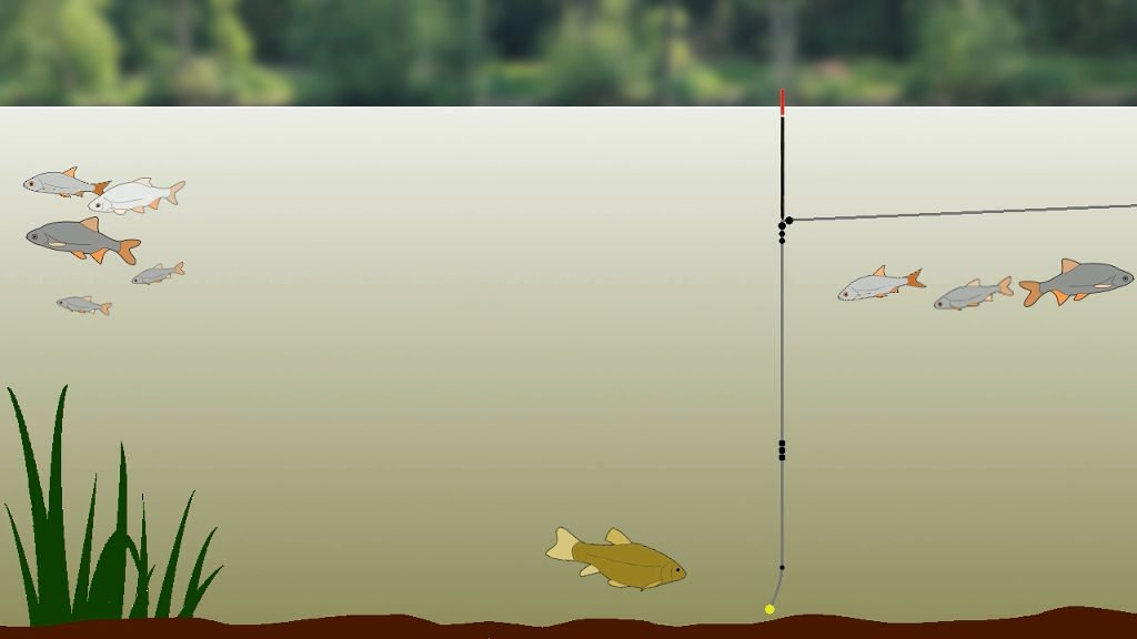 Waggler float rig