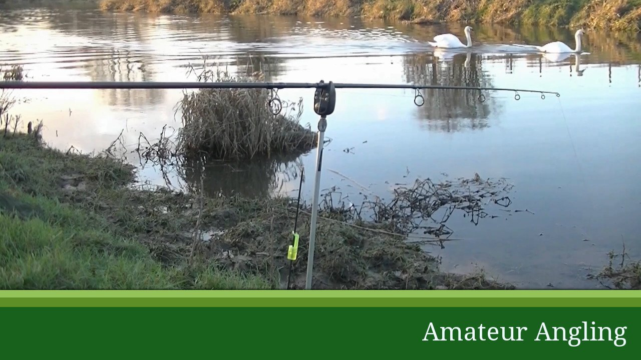 Dead Bait Rigs For River Pike Fishing Amateur Angling