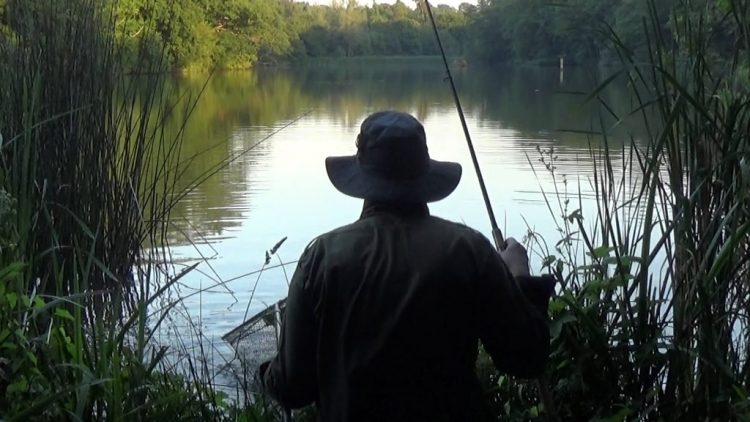 Read more about the article One last fish before I go home