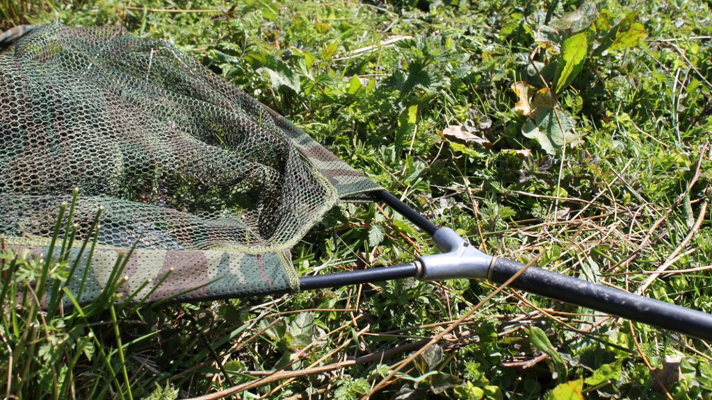 Pike fishing setup landing net