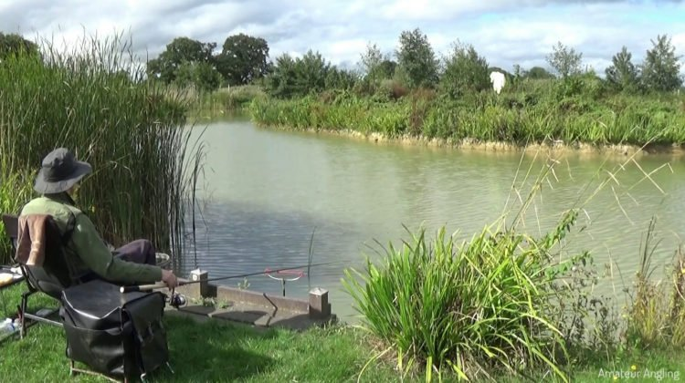Float fishing for Tench with pellets