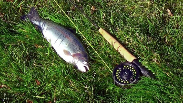 Cinder Hill Fly Fishing Trip